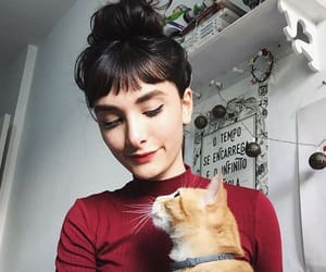 aesthetic, bangs, and cat image
