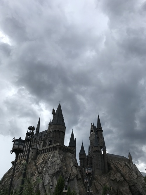 article, bellatrix, and harry potter image