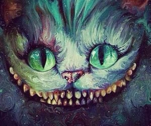 cat, fantasy, and funny image