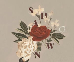 shawn mendes, flowers, and wallpaper image