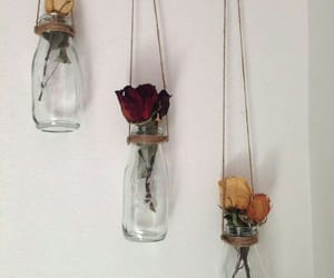diy, roses, and flower image