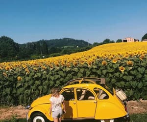 flowers, yellow, and car image