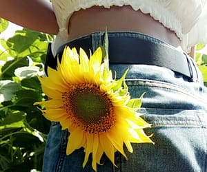 flower, hippie, and sunflowers image