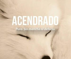 acendrado, words, and puro image