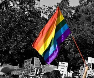 gay pride, español, and top 5 image