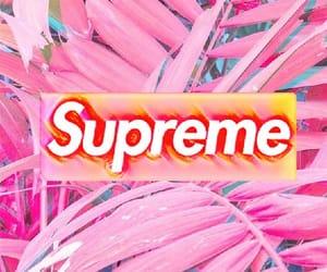 pink, supreme, and wallpaper image