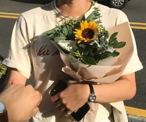 aesthetic, pale, and sunflower image