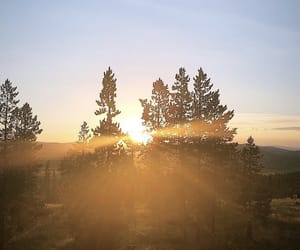 nature, sunrise, and instagram image