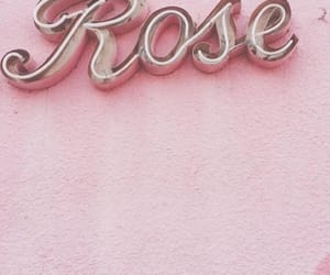 pink, rose, and aesthetic image