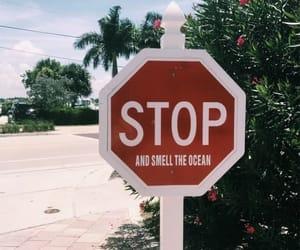 beach, ocean, and stop image