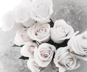 bouquet, gift, and inspiring image