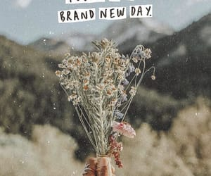 brand, new, and today image