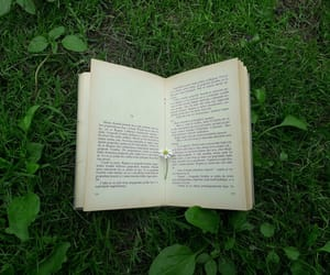 book, grass, and flower image