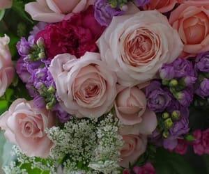 belleza, decoracion, and flores image