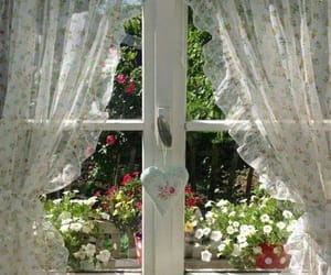 aesthetic, flowers, and window image