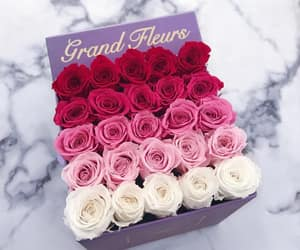 beautiful, bouquet, and red image