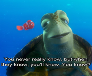 nemo, turtle, and finding nemo image