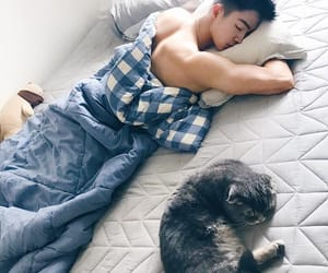 asian boy, cat, and korean image