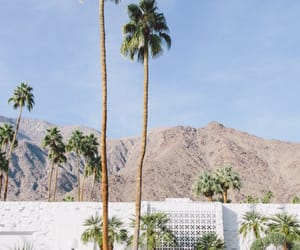 palm springs, vintage, and california image