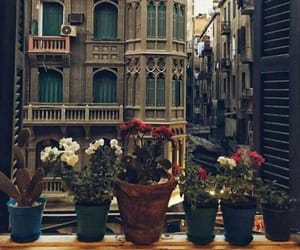 architecture, beautiful, and flowers image