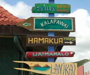 summer, vacation, and hawaii image