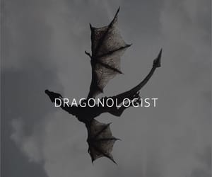 dragons image