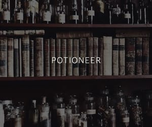 harry potter and potioneer image