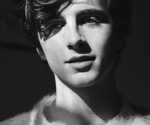 timothee chalamet, call me by your name, and boy image