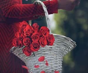 beautiful+beau+belo, hermosa+smukke, and picture+photo+image image