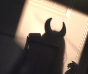 devils, shadows, and golden hour image