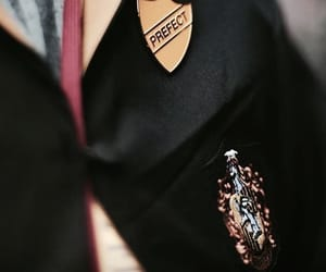 clothes, gryffindor, and potter image