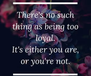 love quotes, quotes, and loyal image