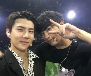 exo, chanyeol, and sehun image