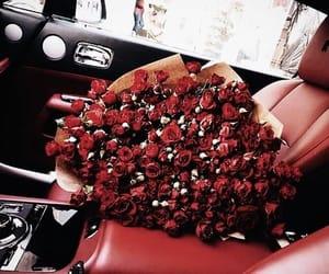 rose, car, and love image