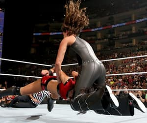 wwe, stephanie mcmahon, and brie bella image