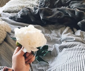 flowers, inspiration, and inspo image
