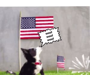 4th of july, american flag, and aww image