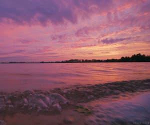 gif, sea, and summer image