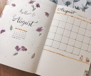 August, calendar, and college image
