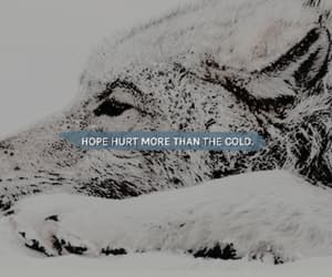 cold, hope, and hurt image