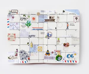 calendar, college, and planner image