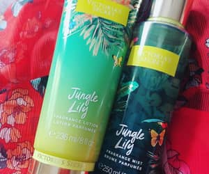 body spray, perfume, and beauty products image