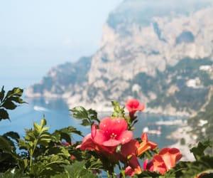 capri, nature, and photography image