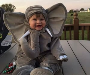 cute, baby, and elephant image