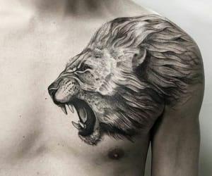 tattoo, animal, and lion image