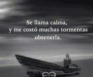 frases and storms image