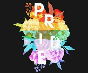 rainbow, lgbt, and flowers image