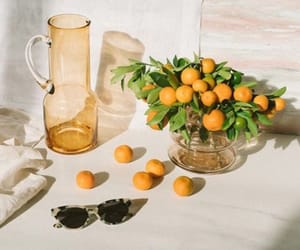 apricots, chic, and design image