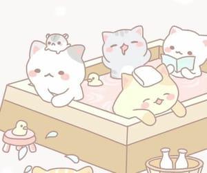 cat and cartoon image