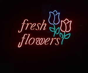 flowers, aesthetic, and fresh image